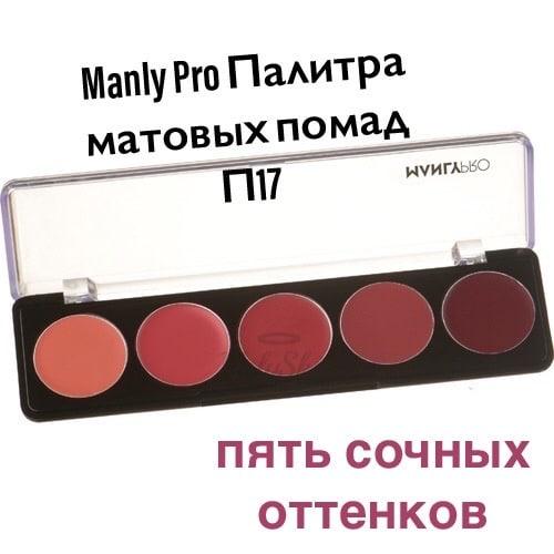 палитра матовых помад П17 manly pro