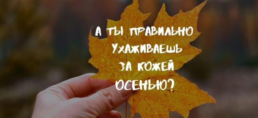 Обложка осень 1