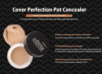 Cover Perfection Pot Concealer The Saem