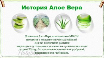 Aloe 76 Soothing Toner Mizon купить