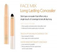 Face Mix Long Lasting Concealer