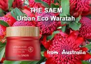 Urban Eco Waratah Sleeping Pack