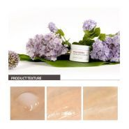 Maqui Berry Hydrating Cream description