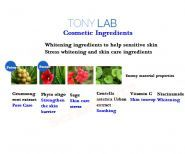 Tony Lab AC Whitening After Spot Tony Moly купить